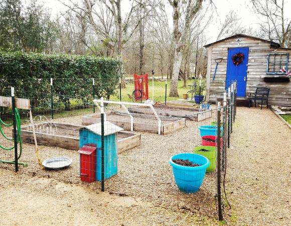 IMG_20170110_180449_573 garden